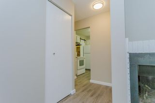 Photo 24: 31 2204 118 Street NW in Edmonton: Zone 16 Carriage for sale : MLS®# E4249147