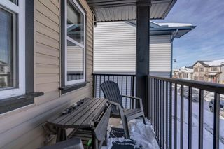 Photo 31: 119 ELGIN MEADOWS Way SE in Calgary: McKenzie Towne Detached for sale : MLS®# A1067731