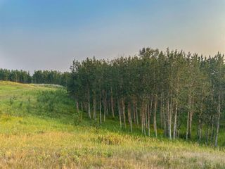 Photo 10: Lot 2 Range Road 33 in Rural Rocky View County: Rural Rocky View MD Land for sale : MLS®# A1134534