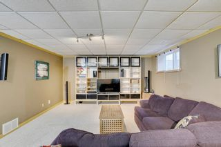 Photo 24: 164 Coventry Circle NE in Calgary: Coventry Hills Detached for sale : MLS®# A1102725