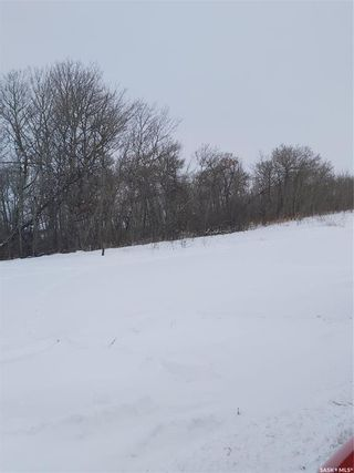 Photo 3: R.M. Of Dundurn #314 lot #2 in Dundurn: Lot/Land for sale (Dundurn Rm No. 314)  : MLS®# SK839263