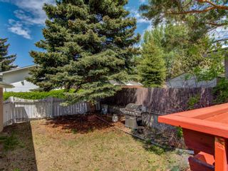 Photo 30: 5135 48 Street NW in Calgary: Varsity Detached for sale : MLS®# A1152810