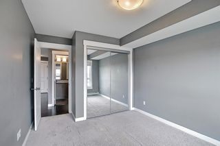 Photo 20: 1406 240 Skyview Ranch Road NE in Calgary: Skyview Ranch Apartment for sale : MLS®# A1139810