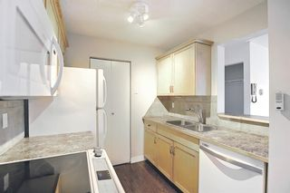 Photo 17: 4302 13045 6 Street SW in Calgary: Canyon Meadows Apartment for sale : MLS®# A1116316
