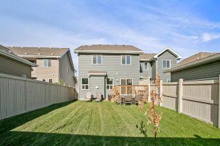 Photo 11: 6822 EVANS Wynd in Edmonton: Zone 57 House Half Duplex for sale : MLS®# E4262515