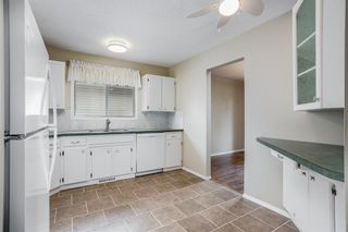 Photo 10: 5112 Whitehorn Drive NE in Calgary: Whitehorn Detached for sale : MLS®# A1135680