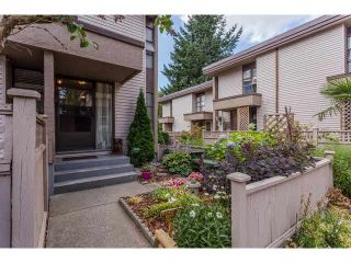 """Photo 1: 49 13809 102 Avenue in Surrey: Whalley Townhouse for sale in """"The Meadows"""" (North Surrey)  : MLS®# F1447952"""