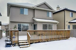 Photo 33: 10 Kincora Heights NW in Calgary: Kincora Detached for sale : MLS®# A1086355