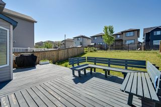 Photo 4: 5619 18 Avenue in Edmonton: Zone 53 House for sale : MLS®# E4252576