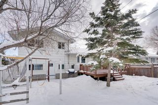 Photo 33: 6139 Buckthorn Road NW in Calgary: Thorncliffe Detached for sale : MLS®# A1070955