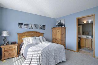 Photo 16: 179 Taravista Street NE in Calgary: Taradale Detached for sale : MLS®# A1071820
