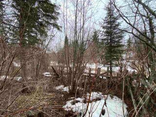 "Photo 7: 5400 PARK Drive in Prince George: Parkridge Land for sale in ""Parkridge"" (PG City South (Zone 74))  : MLS®# R2562955"