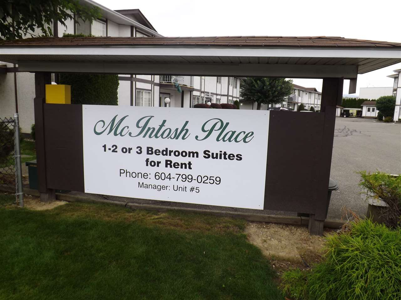 Main Photo: 104A 45655 MCINTOSH Drive in Chilliwack: Chilliwack W Young-Well Condo for sale : MLS®# R2114431