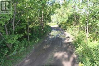Photo 5: LT 3 SHORE RD in Brock: Vacant Land for sale : MLS®# N5357476