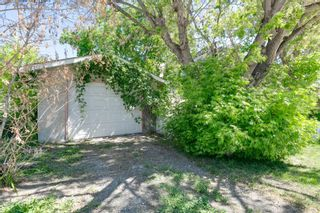 Photo 10: 3841 1 Street SW in Calgary: Parkhill Detached for sale : MLS®# A1122404