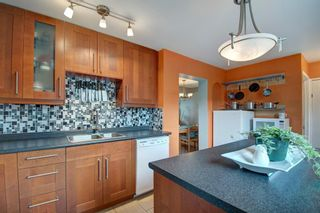 Photo 13: 40 Abergale Way NE in Calgary: Abbeydale Detached for sale : MLS®# A1093008