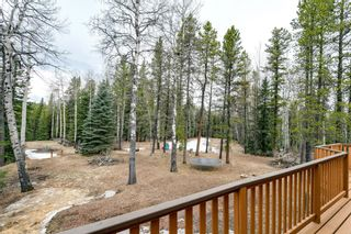 Photo 32: 231167 Forestry Way: Bragg Creek Detached for sale : MLS®# A1111697