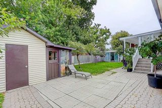 Photo 33: 243 Debborah Place in Whitchurch-Stouffville: Stouffville House (Bungalow) for sale : MLS®# N4896232