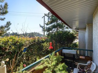 Photo 20: 6 300 Six Mile Rd in VICTORIA: VR Six Mile Row/Townhouse for sale (View Royal)  : MLS®# 799433