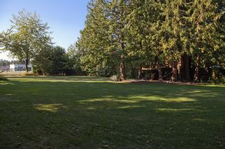Photo 4: 5044 CLIFF Drive in Tsawwassen: Cliff Drive House for sale : MLS®# V906678