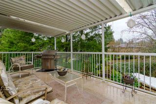 """Photo 18: 9142 212A Place in Langley: Walnut Grove House for sale in """"Walnut Grove"""" : MLS®# R2520134"""