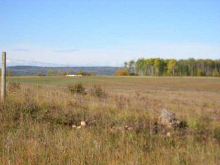 Photo 3: : Edson Rural Land for sale ()  : MLS®# 22122