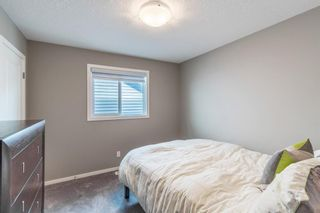 Photo 29: 260 Nolancrest Heights NW in Calgary: Nolan Hill Detached for sale : MLS®# A1117990