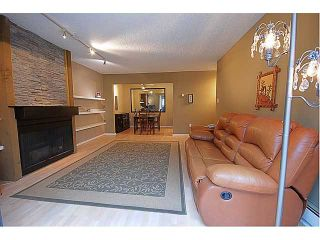 Photo 3: 301 708 8 Avenue in New Westminster: Uptown NW Condo for sale : MLS®# V930149