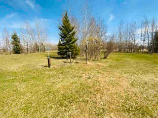 Photo 38: 18 243050 TWP RD 474: Rural Wetaskiwin County House for sale : MLS®# E4242590