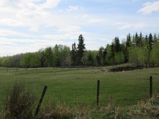 Photo 46: 63202 RR 194: Rural Thorhild County House for sale : MLS®# E4246203