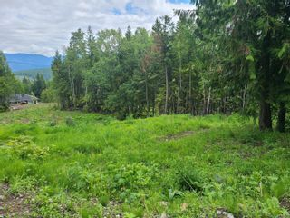 Photo 25: 1395 Taylor Road, in Sorrento: Vacant Land for sale : MLS®# 10229703