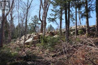 Photo 3: Lot Highway 3 in Summerville Centre: Vacant Land for sale : MLS®# 202109429