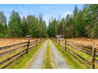 Photo 3: 11722 272 Street in Maple Ridge: Whonnock House for sale : MLS®# R2518748