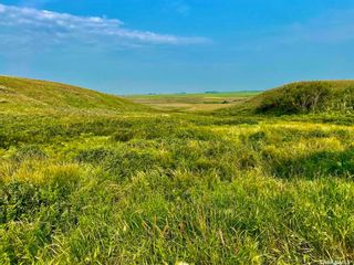 Photo 36: Unvoas Farm in Swift Current: Farm for sale (Swift Current Rm No. 137)  : MLS®# SK864766