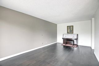 Photo 10: 303 4455A Greenview Drive NE in Calgary: Greenview Apartment for sale : MLS®# A1108022