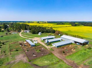 Photo 9: 461017A RR 262: Rural Wetaskiwin County House for sale : MLS®# E4255011