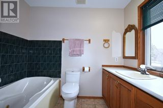 Photo 24: 53118 Range Road 224A in Rural Yellowhead County: House for sale : MLS®# A1100110