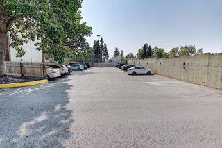 Photo 37: 202 4944 Dalton Drive NW in Calgary: Dalhousie Apartment for sale : MLS®# A1131753