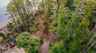 Photo 10: 863 Elina Rd in : PA Ucluelet Land for sale (Port Alberni)  : MLS®# 870302