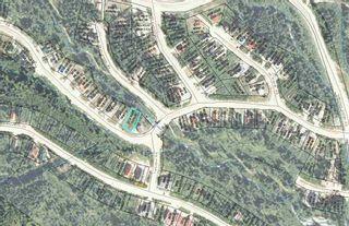 "Photo 9: 20716 SAKWI CREEK Road in Mission: Hemlock Land for sale in ""Hemlock Valley Ski Resort"" : MLS®# R2176457"