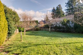 Photo 37: 804 Del Monte Lane in : SE Cordova Bay House for sale (Saanich East)  : MLS®# 863371