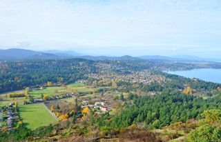Photo 50: 3835 Synod Rd in : SE Cedar Hill House for sale (Saanich East)  : MLS®# 882676