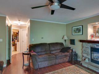 "Photo 14: 21374 RIVER Road in Maple Ridge: Southwest Maple Ridge House for sale in ""River Road"" : MLS®# R2600142"