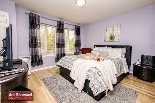 "Photo 22: 24113 102 Avenue in Maple Ridge: Albion House for sale in ""Homestead"" : MLS®# R2499816"