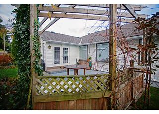 Photo 15: 8827 157TH STREET in Surrey: Fleetwood Tynehead House for sale : MLS®# R2221835