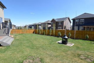 Photo 42: 130 Nolanshire Crescent NW in Calgary: Nolan Hill Detached for sale : MLS®# A1104088