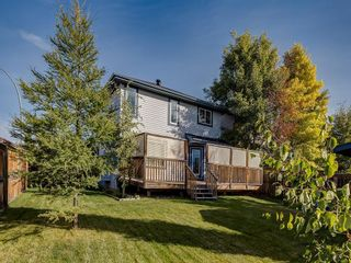 Photo 48: 92 WENTWORTH Circle SW in Calgary: West Springs Detached for sale : MLS®# C4270253