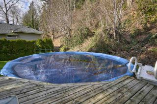 "Photo 36: 35825 OLD YALE Road in Abbotsford: Abbotsford East House for sale in ""W OF TRWY TO MCLR N OF SFW"" : MLS®# R2537816"