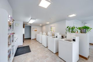 Photo 16: 220 1025 Inverness Rd in Saanich: SE Quadra Condo for sale (Saanich East)  : MLS®# 888132
