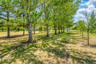 Photo 2: 251046 Rge Rd 263: Rural Wheatland County Residential Land for sale : MLS®# A1117285